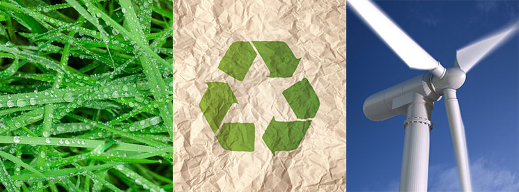 The Answer Company offers eco-friendly alternatives to help reduce your company's carbon footprint.
